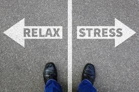 Plus que quelques places pour notre session de pleine conscience et gestion du stress…